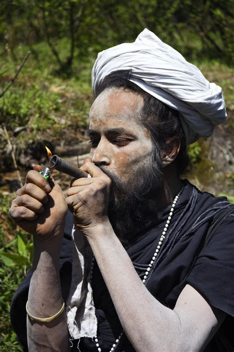 Famous Weed Tourism Destination In India Aims To Preserve