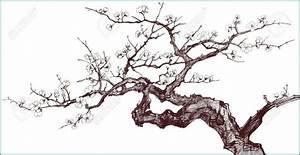 Dessin Fleur De Cerisier Japonais Noir Et Blanc : 42 belle fleur de cerisier japonais dessin pressoir argent ~ Melissatoandfro.com Idées de Décoration