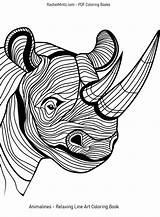 Rinoceronte Neushoorn Clipart Nashoerner Clip Kopf Tier Animale Sample Vektor Testa Corne Illustrations Coloring Zeichnungen Animal Rhinoceroses Relaxing Stress Wonderful sketch template