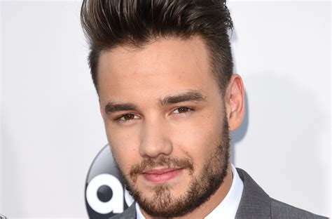One Direction Fans Start Charity Drive For Liam Payne's
