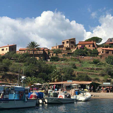 golfo di porto corsica boat trip picture of golfo di porto girolata e