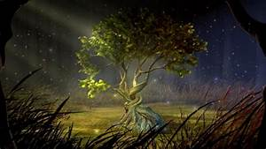 Mystic Tree Animated wallpaper HD ~ The Wallpaper Database