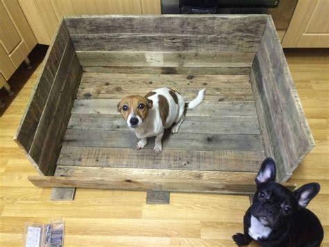 whelping box  pallets