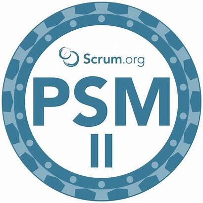 Scrum Master Professional Course Psm Agile Training