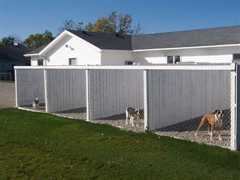 outdoor kennel runs then connected to land where they room to