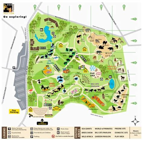 create  zoo map tutorial illustration pinterest