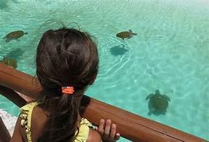 Mexico met kind... Mooiste Cenotes Cancun