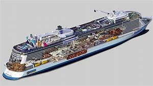 Royal Caribbean posts updated Quantum of the Seas cutaway