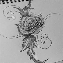 Rose Drawing Pencil Sketches