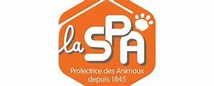 Spa De Montpellier : flash information r mi gaillard et le refuge de ~ Dode.kayakingforconservation.com Idées de Décoration