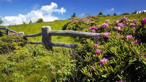 Beautiful Spring Landscape Hd Desktop Background