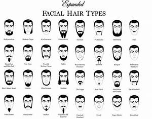 Beard Chart  Women Find Men With A Heavy Stubble  Light