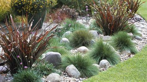 gräser für balkon steingarten mit gras suche pflanzen garden