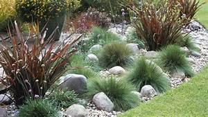 Pflanzen Für Steingarten : steingarten mit gras google suche pflanzen pinterest ~ Michelbontemps.com Haus und Dekorationen