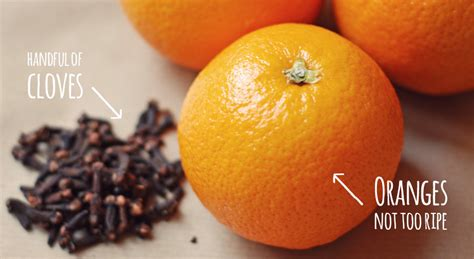 orange pomanders stay roam