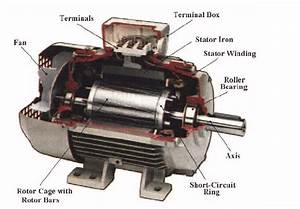 Induction Motor Cross Section