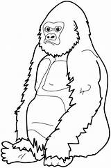 Gorilla Coloring Pages Clipart Cartoon Cute Cliparts Gorillas Baby Face Monkey River Sitting Down Elephant Craft Cool Animal Printable Sheets sketch template