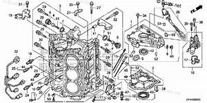 Wiring Diagram Honda Outboard