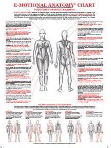 Emotional Anatomy Chart