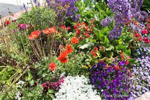 flower bed ideas pictures beautiful flowers