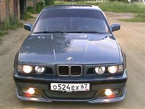 1988 Bmw 525i Automatic E34 Related Infomation