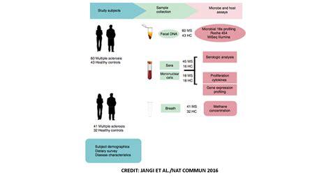 gut microbiota    potential target