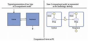 Create Pharmacokinetic Models
