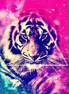 Galaxy tiger 2 | Background ideas | Pinterest | Tigers and ...
