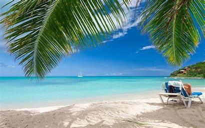 Beach Palm Tropical Caribbean Summer Trees Sea