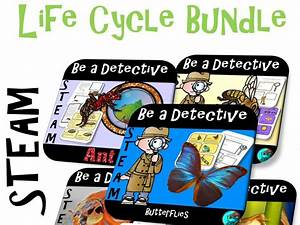 Project Based Learning  Life Cycle