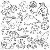 Coloring Sea Vector Activity Aquarium Organism Illustration sketch template