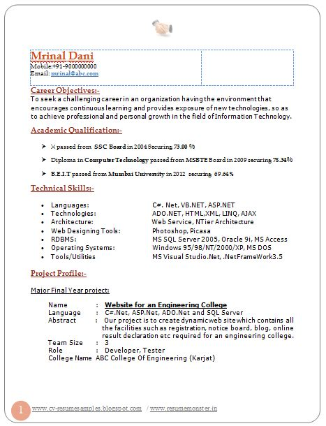 Professional Curriculum Vitae Format by Professional Curriculum Vitae Resume Template For All