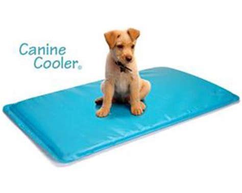 tapis d entrainement pour chien canine cooler tapis rafraichissant pour chien 224 m 233 moire de forme