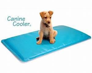 canine cooler tapis rafraichissant pour chien a memoire With tapis rafraîchissant chien
