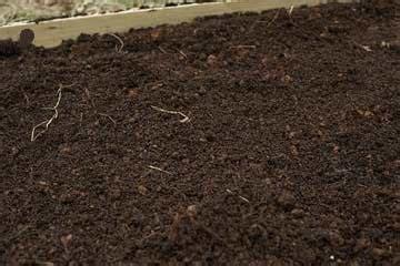 loam definition what is loam soil