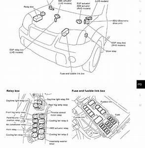 2000 Nissan Xterra Fuse Box Diagram  Nissan  Wiring
