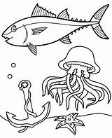 Coloring Tuna Meduza Jellyfish Kolorowanka Topcoloringpages Water Tunczyk Dzieci Dla Sea Kolorowanki Colouring sketch template