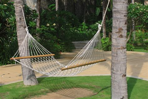 How To Hang A Hammock Between Trees by How To Hang A Hammock Ebay