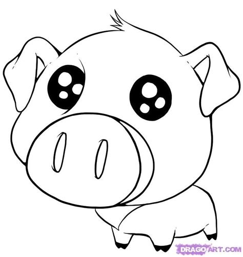 cute drawings  animals   draw  cute pig step