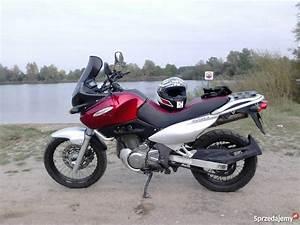Suzuki Freewind 650 : suzuki xf 650 freewind tanio zamiana na skuter leszno ~ Dode.kayakingforconservation.com Idées de Décoration
