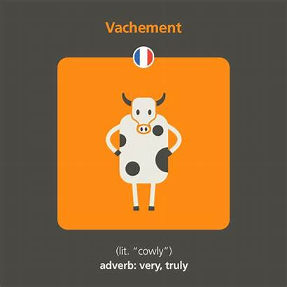 French Words Funny Babbel Adverbs Short