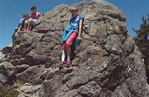 Rocky 3 Cda : gentle annie track tararua forest park wairarapa region ~ Buech-reservation.com Haus und Dekorationen