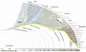 Human Origins In Metaphysical Naturalism  Abiogenesis