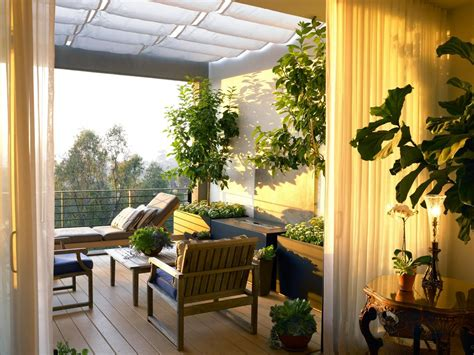 piante terrazzo alberi da balcone piante da terrazzo