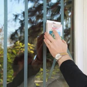 stop birds from hitting windows solutions to birds hitting windows 8364