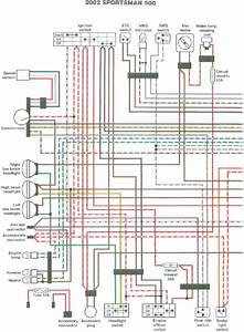2000 Polaris Scrambler 90 Wiring Diagram