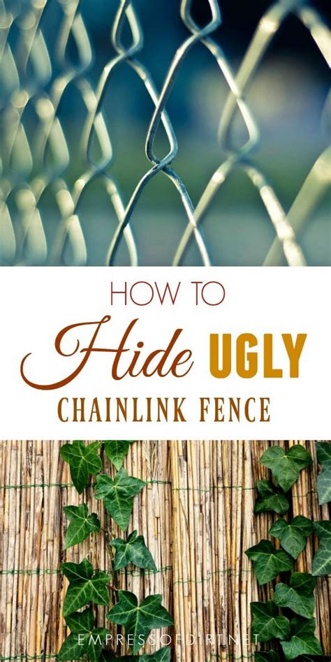 hide ugly chainlink fence empress  dirt