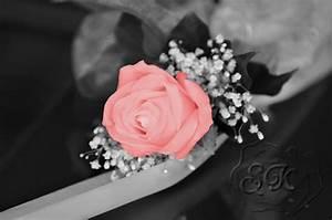 Schwarz Weiß Bilder Mit Farbe Städte : rose schwarz wei und doch farbe foto bild pflanzen pilze flechten bl ten ~ Orissabook.com Haus und Dekorationen