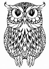 Owl Coloring Printable Pages Adults Detailed sketch template