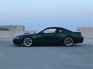 New Edge Bullitt Mustang | Ford mustang bullitt, Ford mustang cobra, New edge mustang